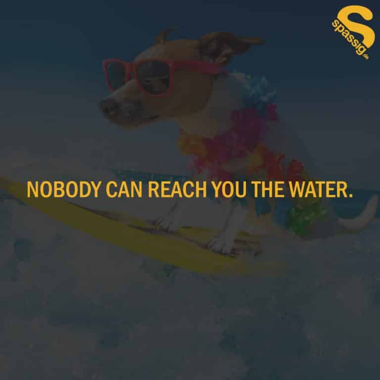 Nobody can reach you the water - Spruch